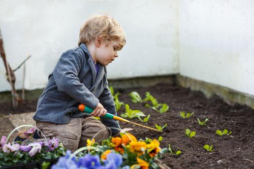 Organické pestovanie