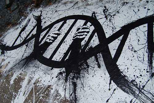 V zajatí svojich génov?