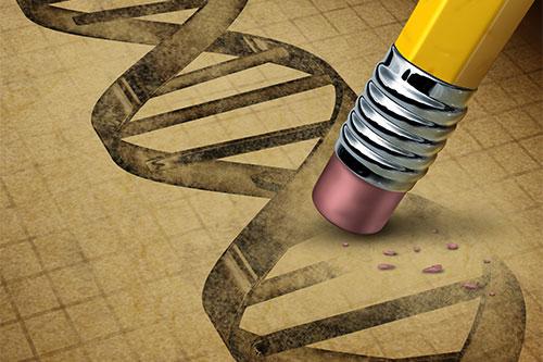 Nakopnite tie správne gény