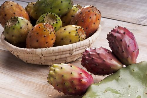Opuncia - Zdravý jedlý kaktus