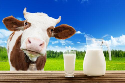 Výsledok vyhľadávania obrázkov pre dopyt mlieko