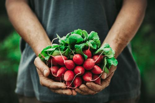 Vitamín B12: vegetariáni a vegáni