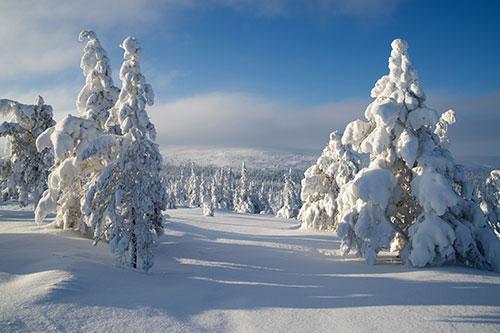 Zima v pohode