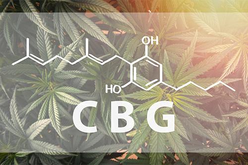 Ako funguje CBG kannabigerol v tele